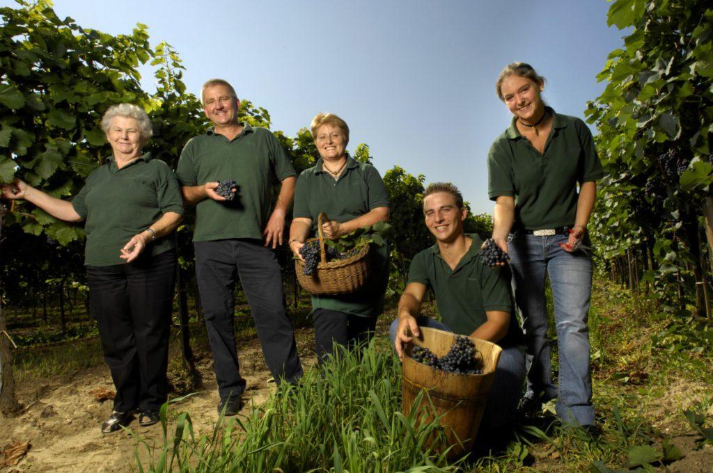 Familie Beranek im Weingarten bei der Weinlese
